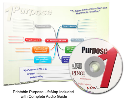 PING! Purpose LifeMap